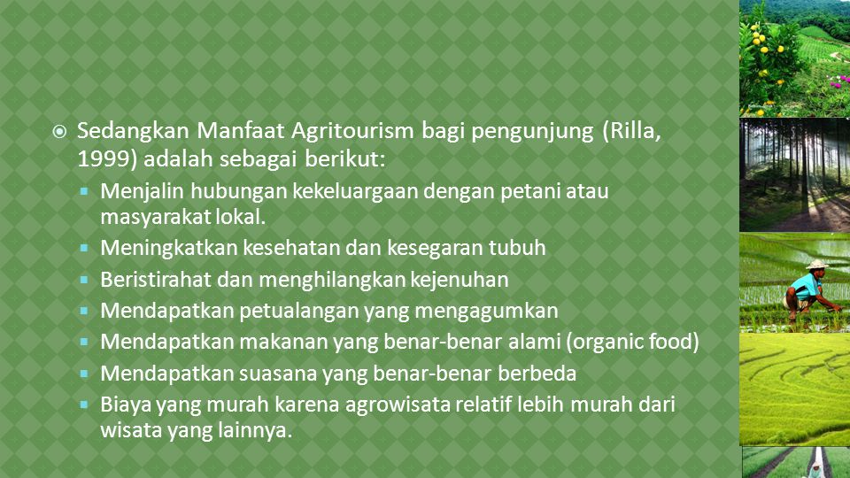 Sedangkan Manfaat Agritourism bagi pengunjung (Rilla, 1999) adalah sebagai berikut: