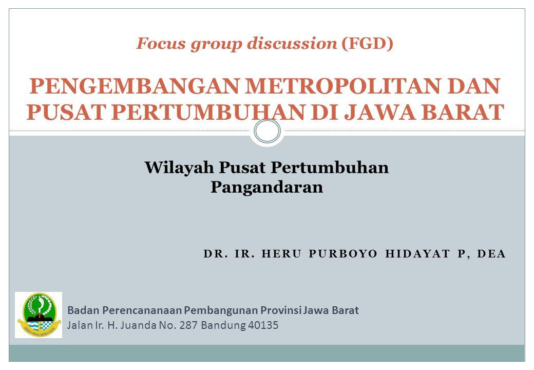 Dr. Ir. Heru Purboyo Hidayat P, DEA