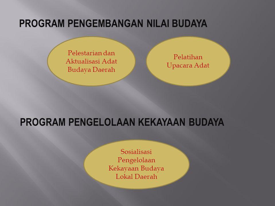 PROGRAM PENGEMBANGAN NILAI BUDAYA