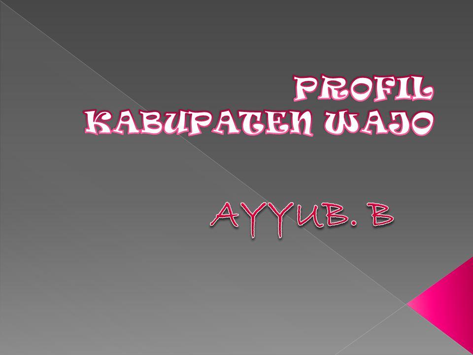 PROFIL KABUPATEN WAJO AYYUB. B