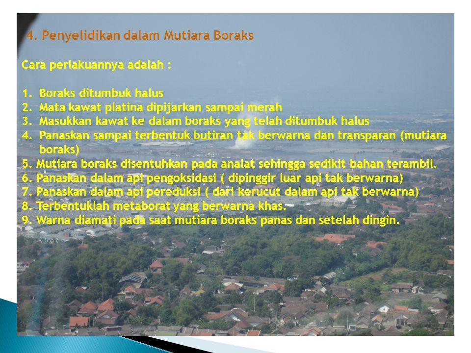 4. Penyelidikan dalam Mutiara Boraks