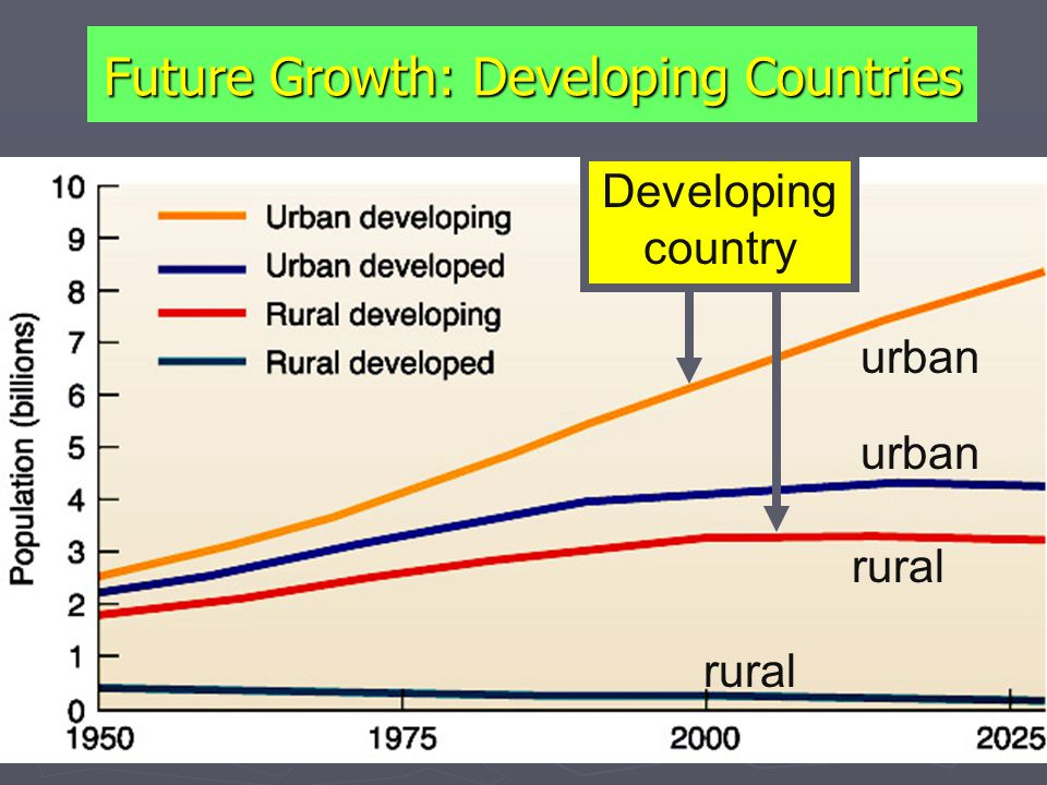 Future Growth: Developing Countries