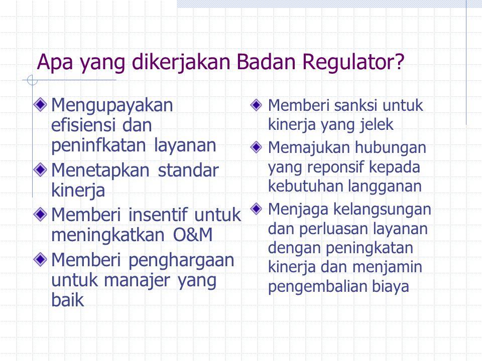 Apa yang dikerjakan Badan Regulator