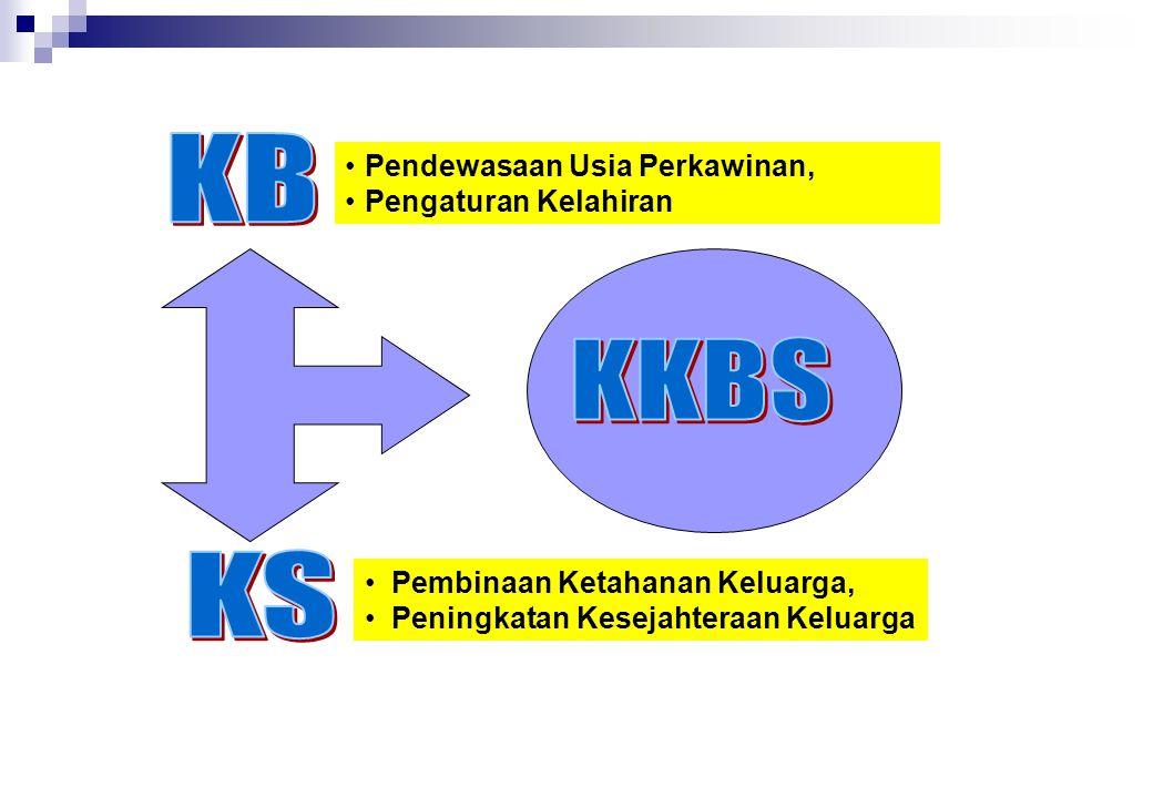 KB KKBS KS Pendewasaan Usia Perkawinan, Pengaturan Kelahiran