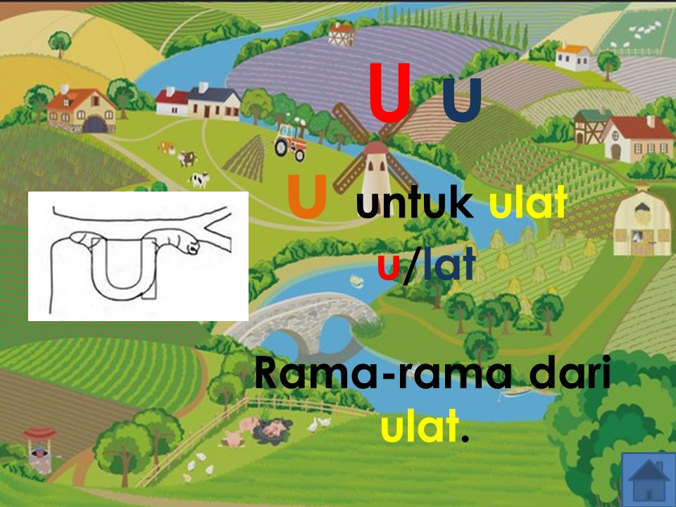U u u untuk ulat u/lat Rama-rama dari ulat.
