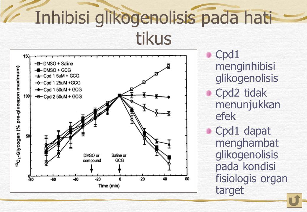 Inhibisi glikogenolisis pada hati tikus