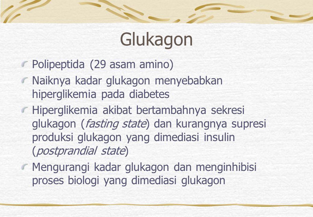 Glukagon Polipeptida (29 asam amino)