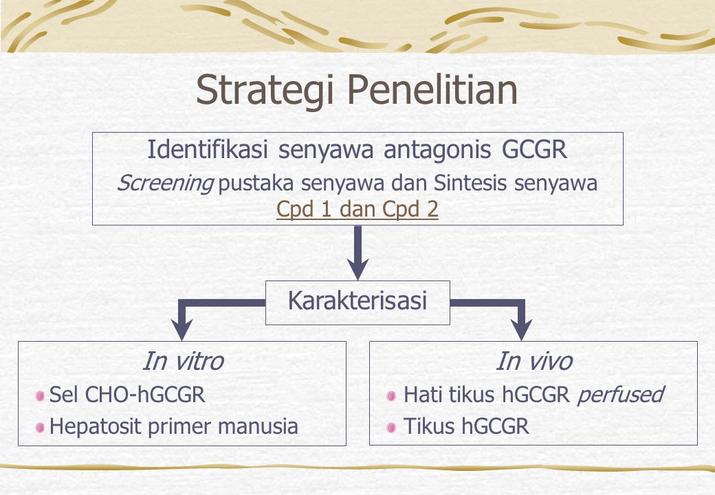 Strategi Penelitian Identifikasi senyawa antagonis GCGR Karakterisasi