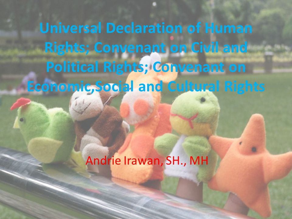 Universal Declaration of Human Rights; Convenant on Civil and Political Rights; Convenant on Economic,Social and Cultural Rights