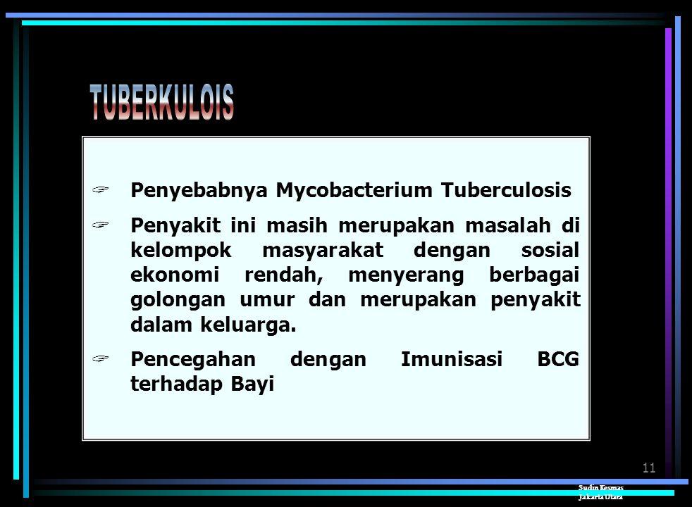 TUBERKULOIS Penyebabnya Mycobacterium Tuberculosis
