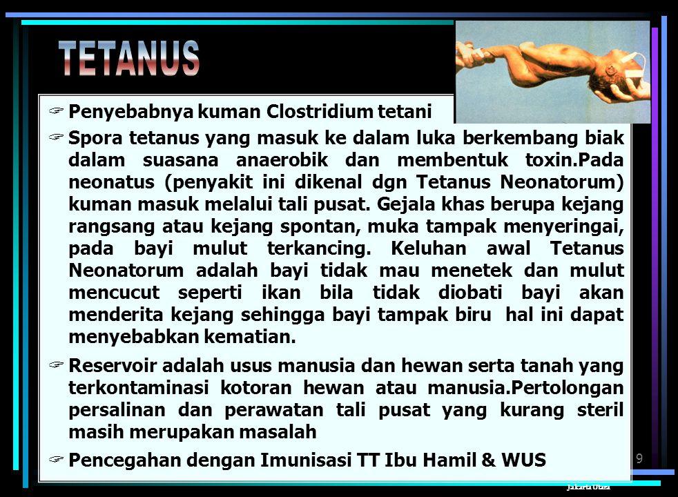 TETANUS Penyebabnya kuman Clostridium tetani