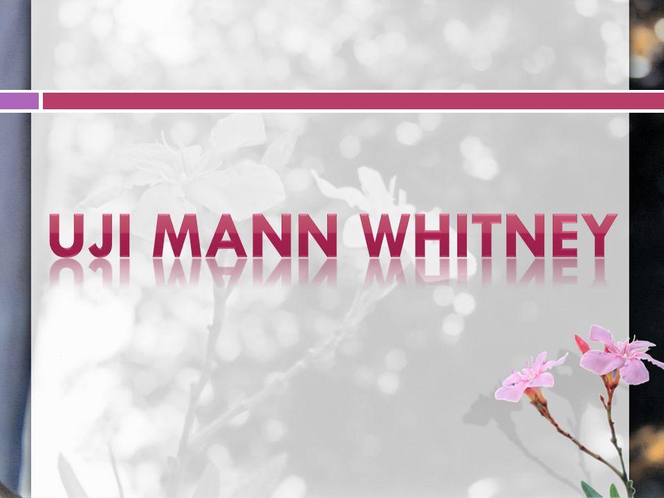 Uji Mann Whitney