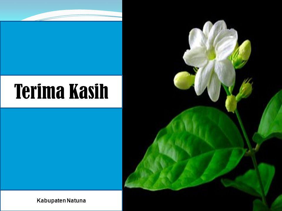 SEsSEKIA Terima Kasih Kabupaten Natuna