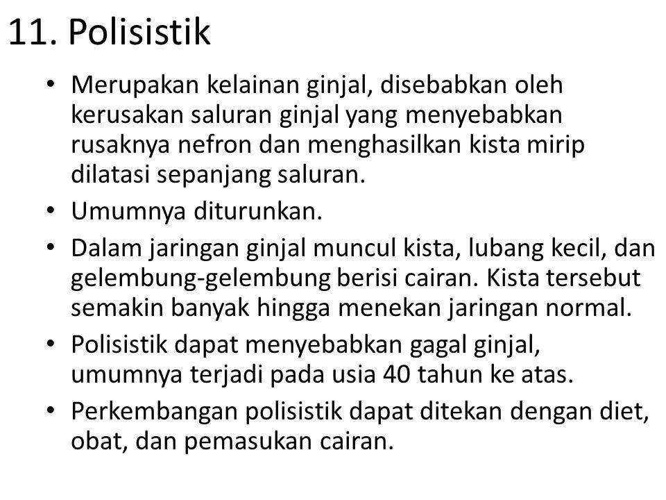 11. Polisistik