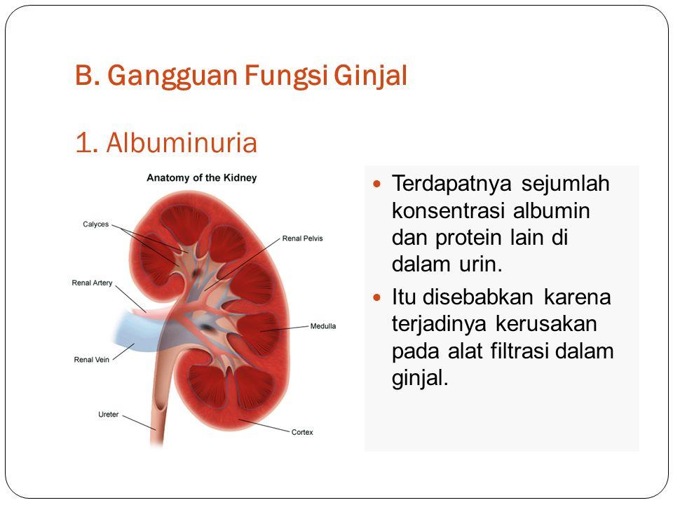 B. Gangguan Fungsi Ginjal