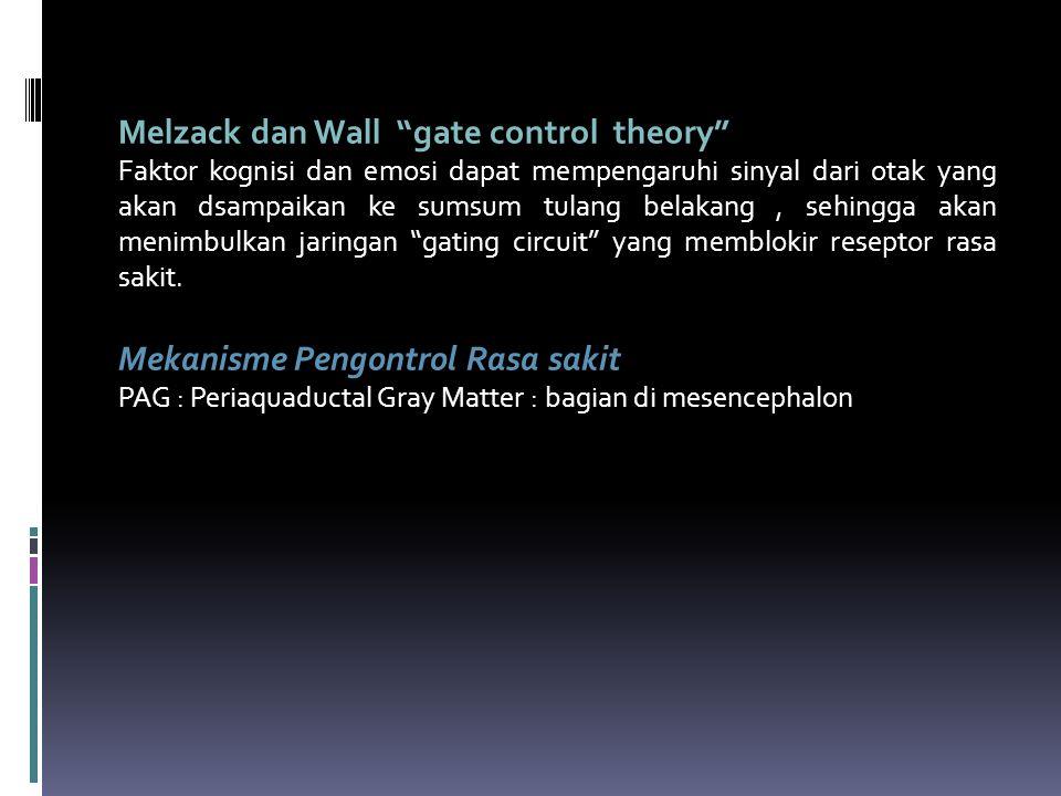 Melzack dan Wall gate control theory