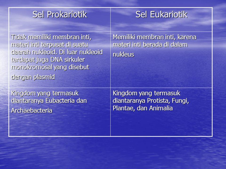 Sel Prokariotik Sel Eukariotik