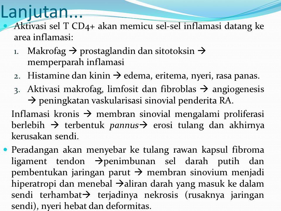Lanjutan... Aktivasi sel T CD4+ akan memicu sel-sel inflamasi datang ke area inflamasi: