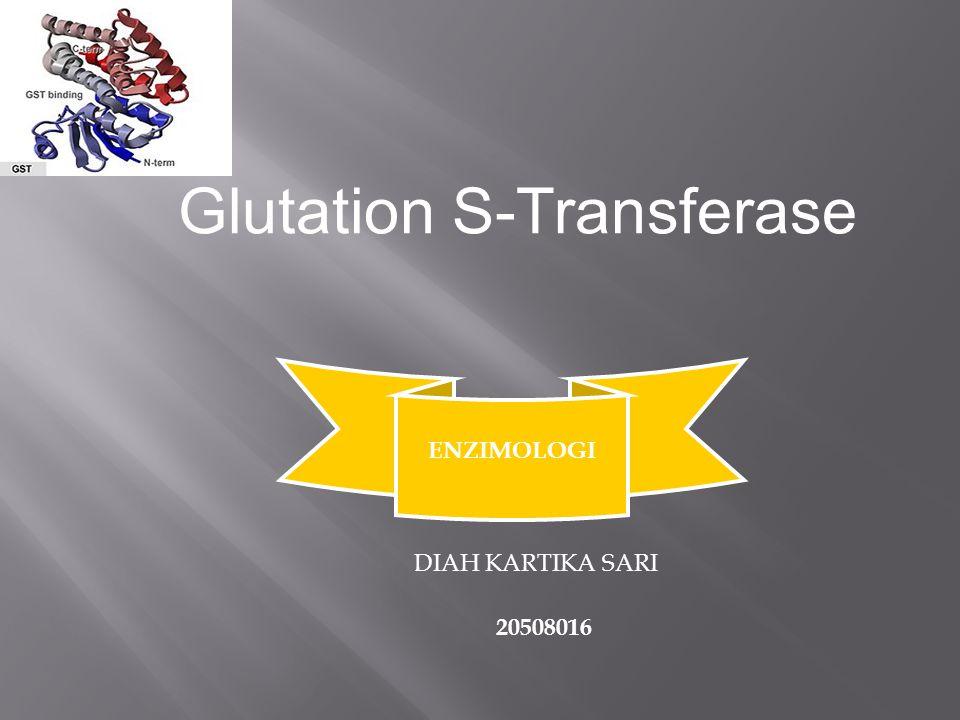 Glutation S-Transferase
