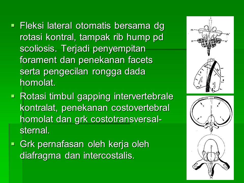 Fleksi lateral otomatis bersama dg rotasi kontral, tampak rib hump pd scoliosis. Terjadi penyempitan forament dan penekanan facets serta pengecilan rongga dada homolat.