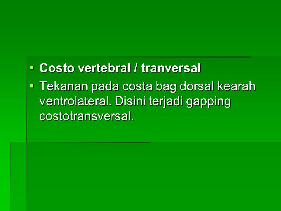 Costo vertebral / tranversal