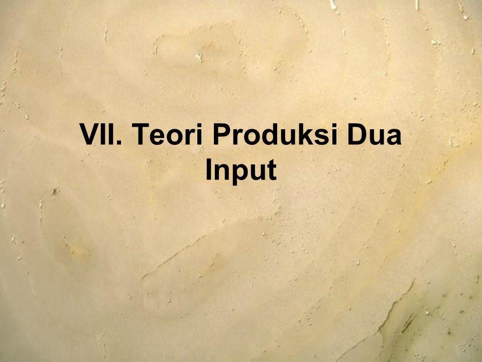 VII. Teori Produksi Dua Input