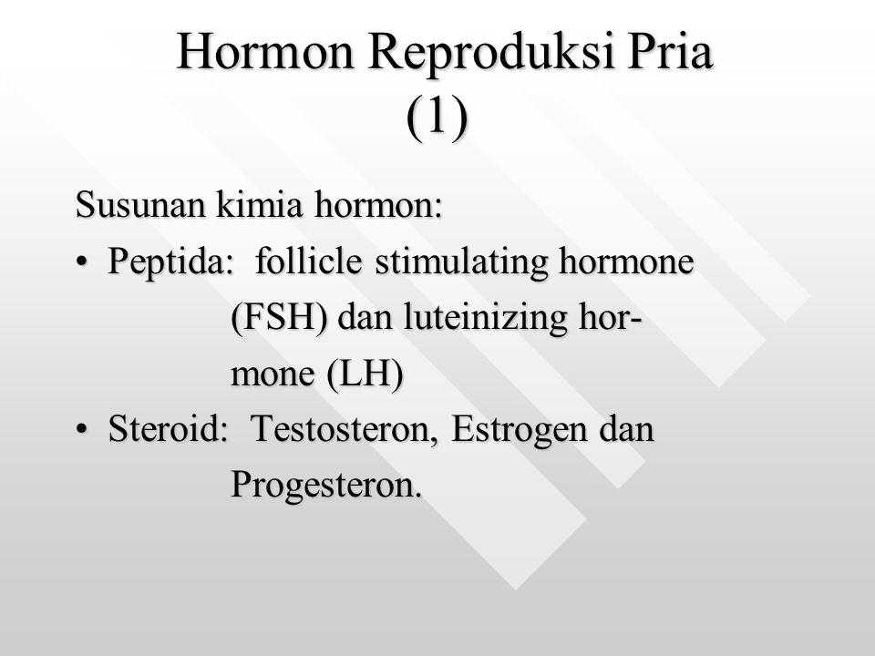 Hormon Reproduksi Pria (1)