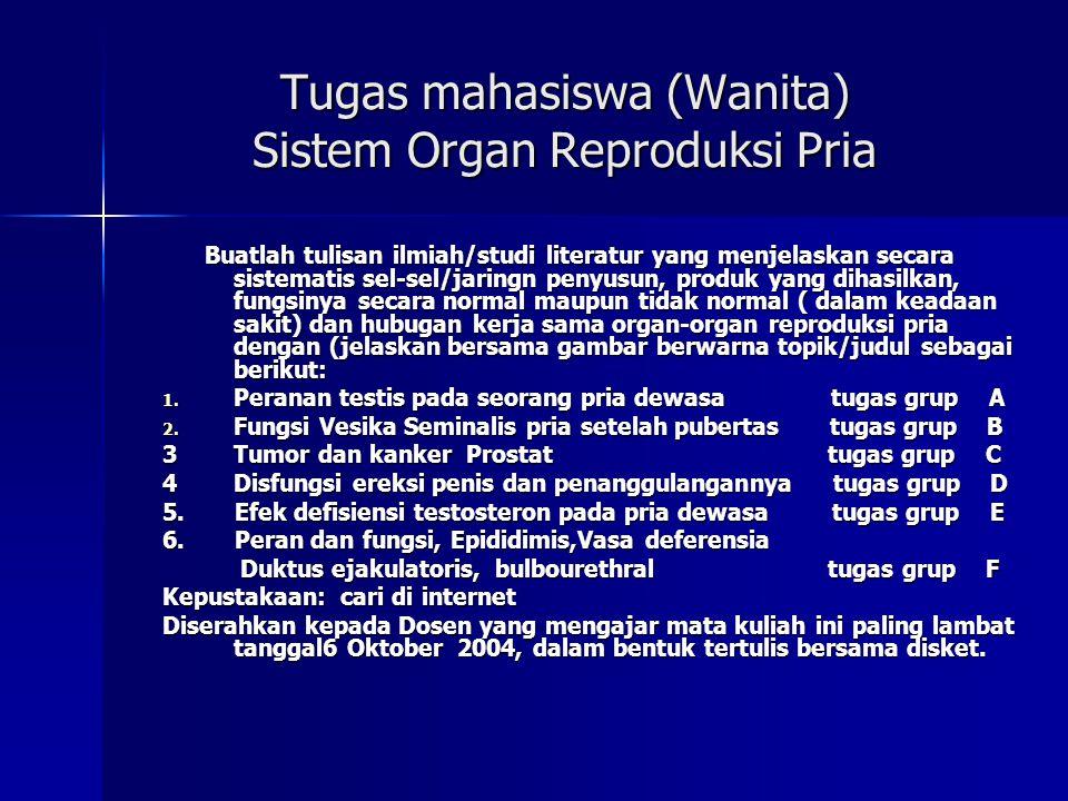 Tugas mahasiswa (Wanita) Sistem Organ Reproduksi Pria