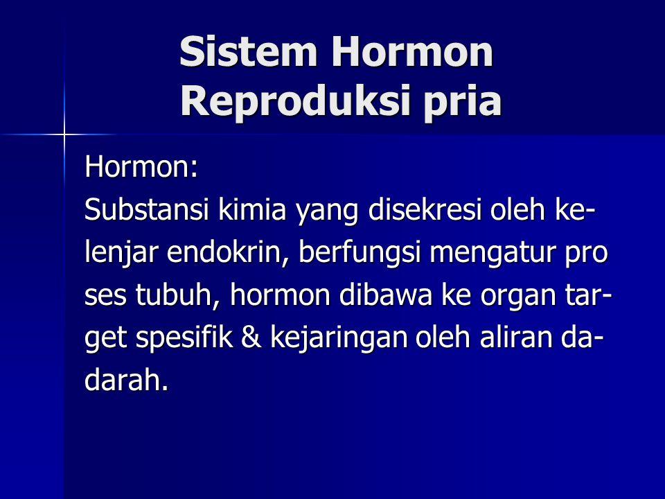 Sistem Hormon Reproduksi pria