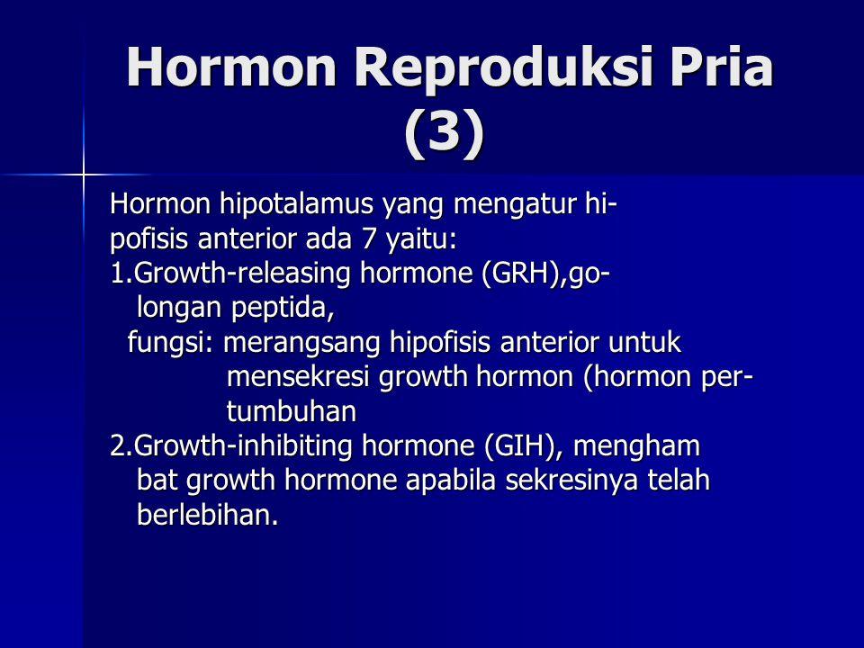 Hormon Reproduksi Pria (3)