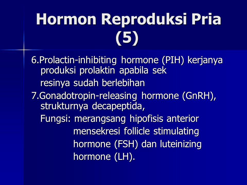 Hormon Reproduksi Pria (5)