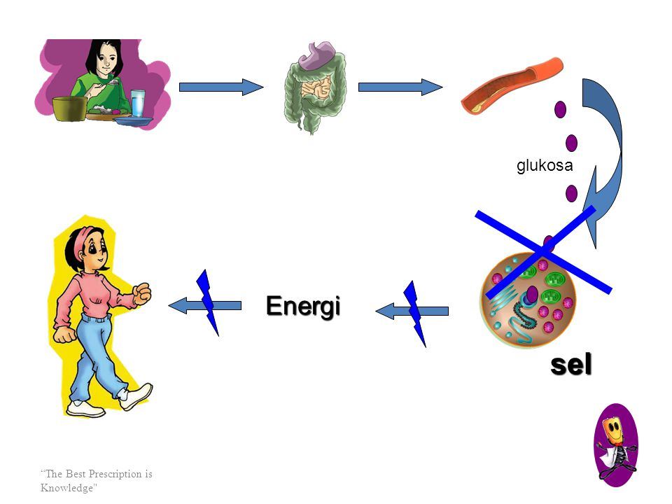 glukosa Energi sel The Best Prescription is Knowledge
