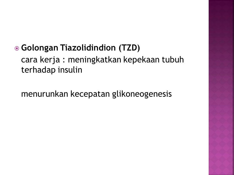 Golongan Tiazolidindion (TZD)