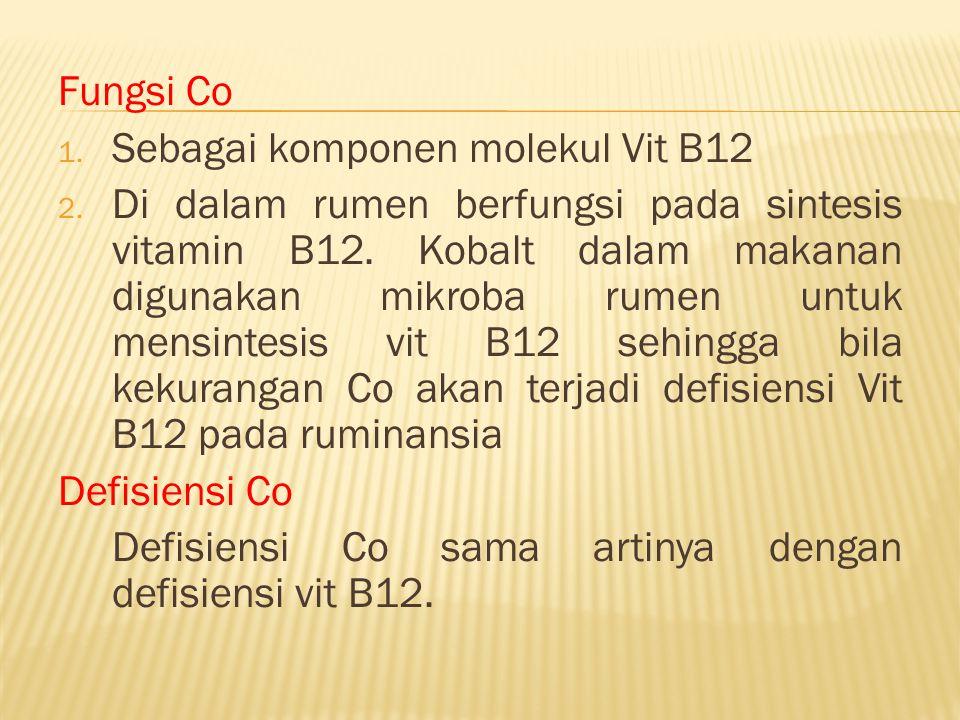 Fungsi Co Sebagai komponen molekul Vit B12.