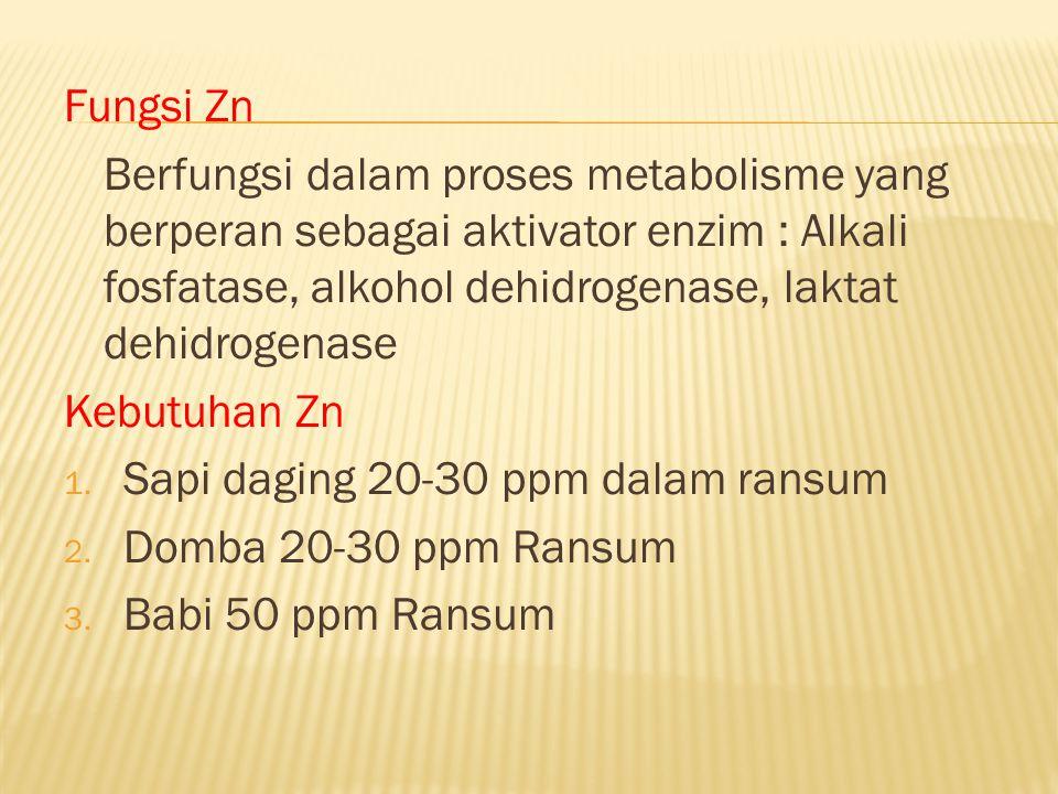 Fungsi Zn Berfungsi dalam proses metabolisme yang berperan sebagai aktivator enzim : Alkali fosfatase, alkohol dehidrogenase, laktat dehidrogenase.