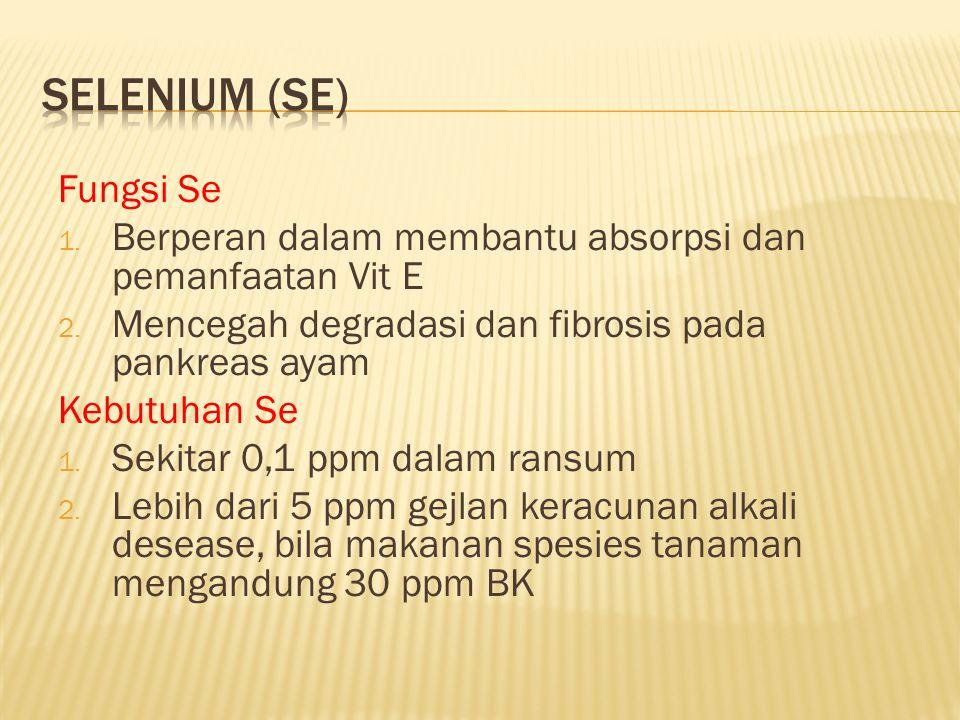 Selenium (Se) Fungsi Se