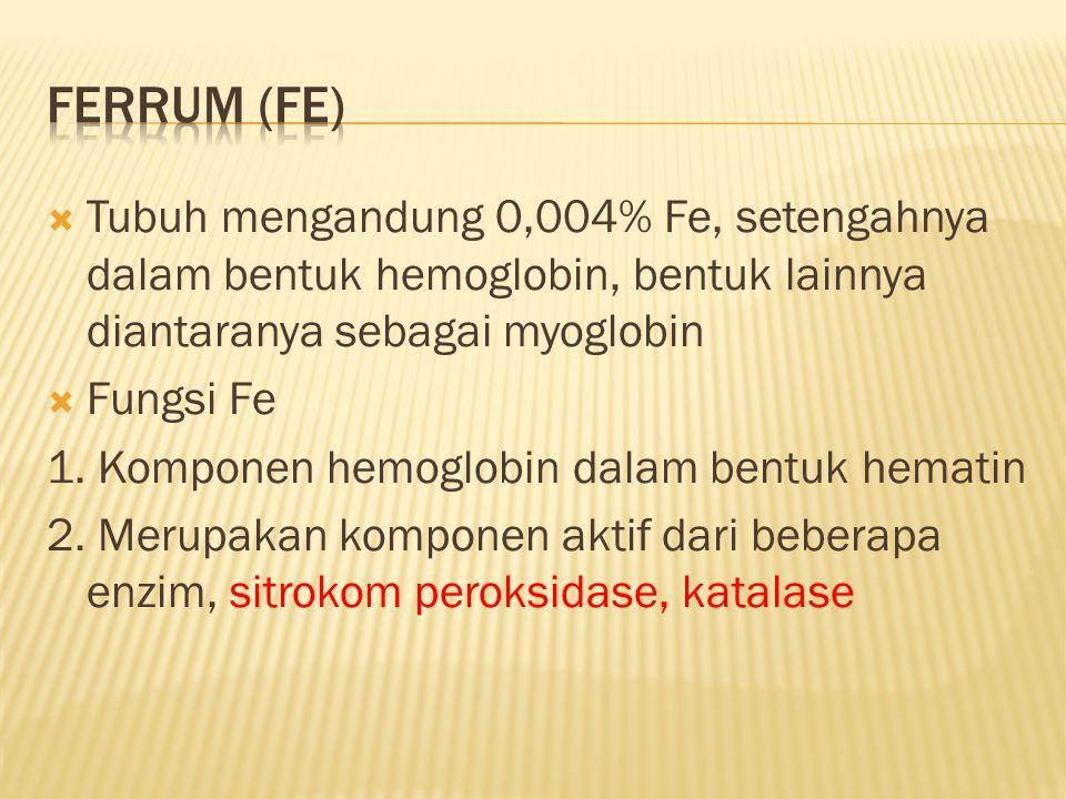 Ferrum (Fe) Tubuh mengandung 0,004% Fe, setengahnya dalam bentuk hemoglobin, bentuk lainnya diantaranya sebagai myoglobin.