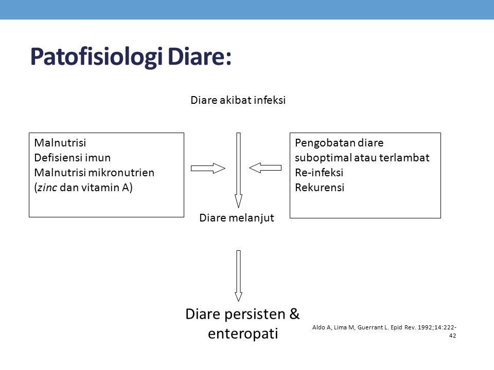 Diare persisten & enteropati