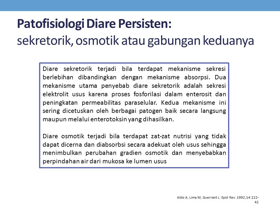 Patofisiologi Diare Persisten: sekretorik, osmotik atau gabungan keduanya