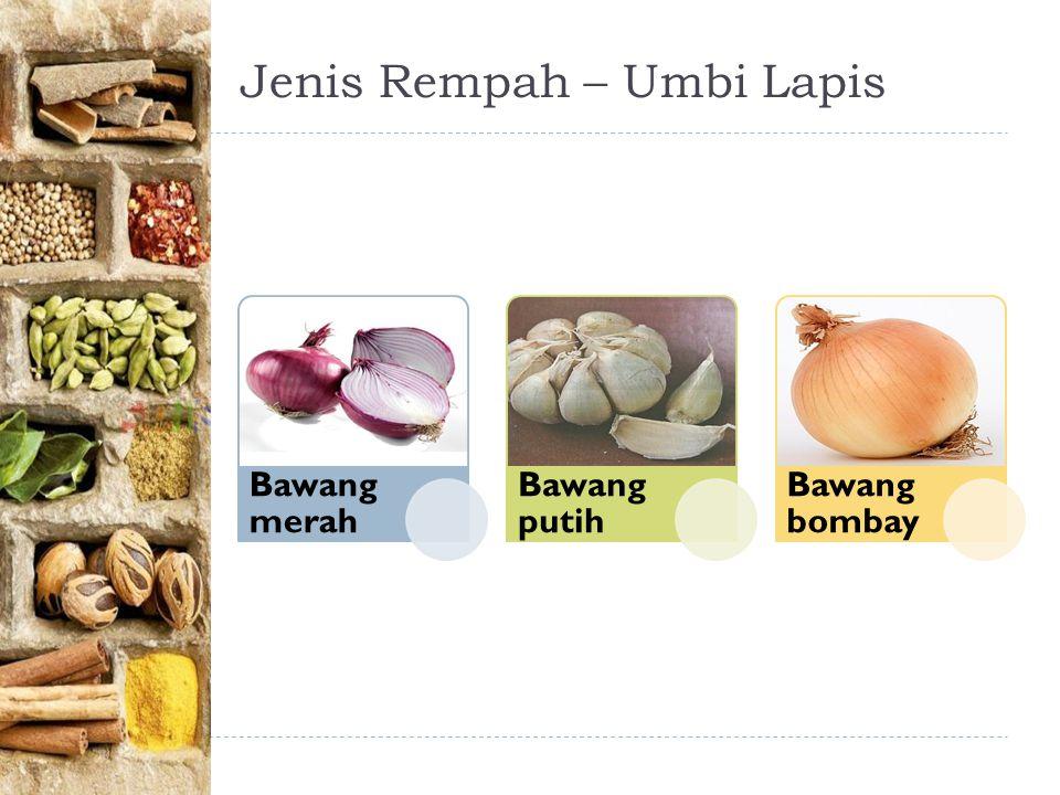 Jenis Rempah – Umbi Lapis