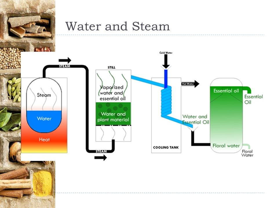 Water and Steam