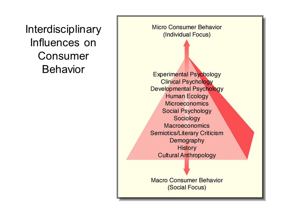 Interdisciplinary Influences on Consumer Behavior