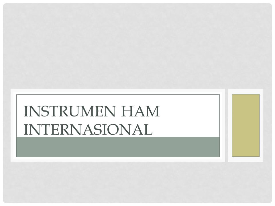 Instrumen HAM Internasional