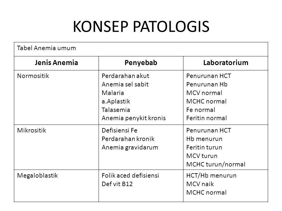 KONSEP PATOLOGIS Jenis Anemia Penyebab Laboratorium Tabel Anemia umum