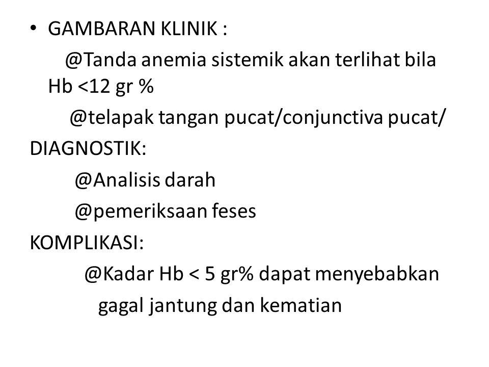 GAMBARAN KLINIK : @Tanda anemia sistemik akan terlihat bila Hb <12 gr % @telapak tangan pucat/conjunctiva pucat/