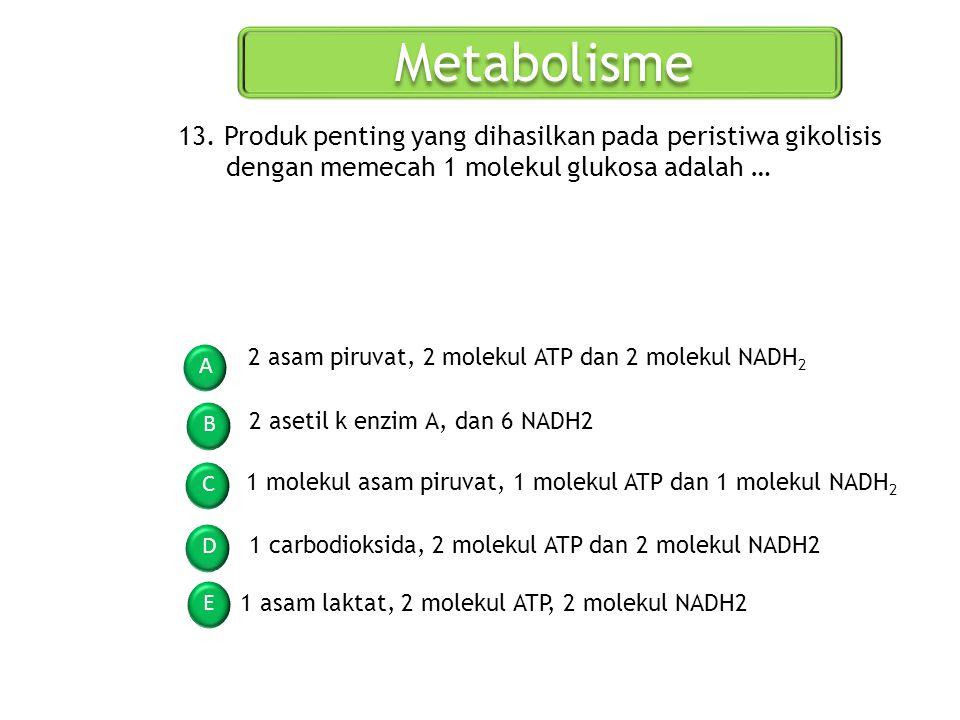 Metabolisme 13. Produk penting yang dihasilkan pada peristiwa gikolisis dengan memecah 1 molekul glukosa adalah …