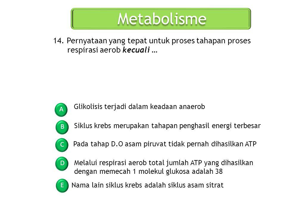 Metabolisme 14. Pernyataan yang tepat untuk proses tahapan proses respirasi aerob kecuali … Glikolisis terjadi dalam keadaan anaerob.