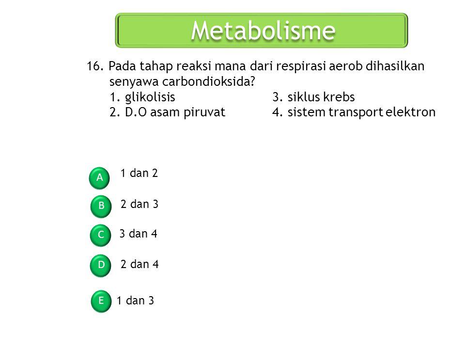 Metabolisme 16. Pada tahap reaksi mana dari respirasi aerob dihasilkan senyawa carbondioksida 1. glikolisis 3. siklus krebs.