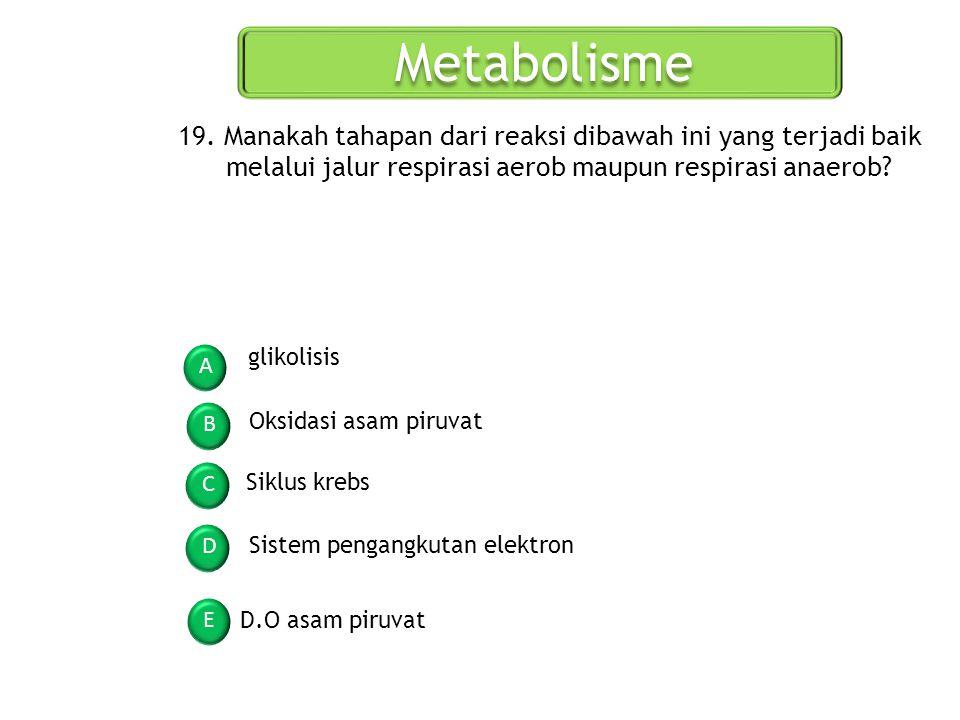 Metabolisme 19. Manakah tahapan dari reaksi dibawah ini yang terjadi baik melalui jalur respirasi aerob maupun respirasi anaerob