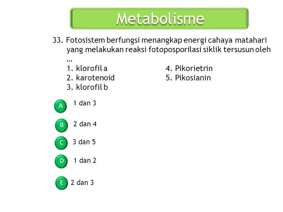 Metabolisme 33. Fotosistem berfungsi menangkap energi cahaya matahari yang melakukan reaksi fotoposporilasi siklik tersusun oleh …